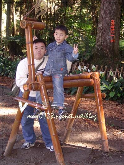 2010.01.09-89溪頭森林遊樂區.jpg