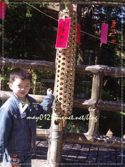 2010.01.09-92溪頭森林遊樂區.jpg