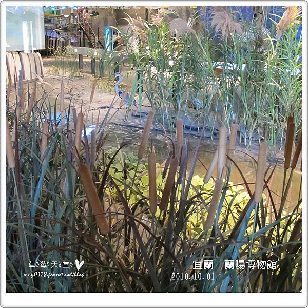 蘭陽博物館60-2010.10.01.JPG