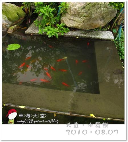 謙八歲暖身趴水舞饌7-2010.08.07.JPG