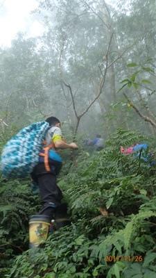 09直上霧.JPG