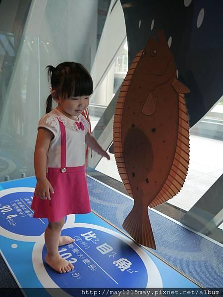 2-10基隆 海洋科技博物館 兒童館 溜小孩.JPG