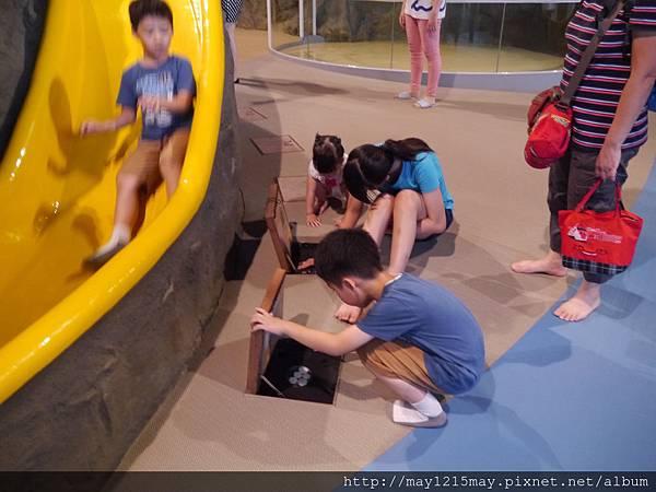 3-4基隆 海洋科技博物館 兒童館 溜小孩.JPG
