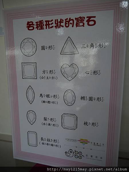 10採糖貝貝.JPG