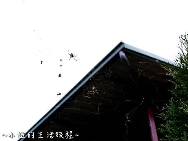 小妞的生活旅程17新竹五峰 賽夏有機農場 露營區 五星級.jpg