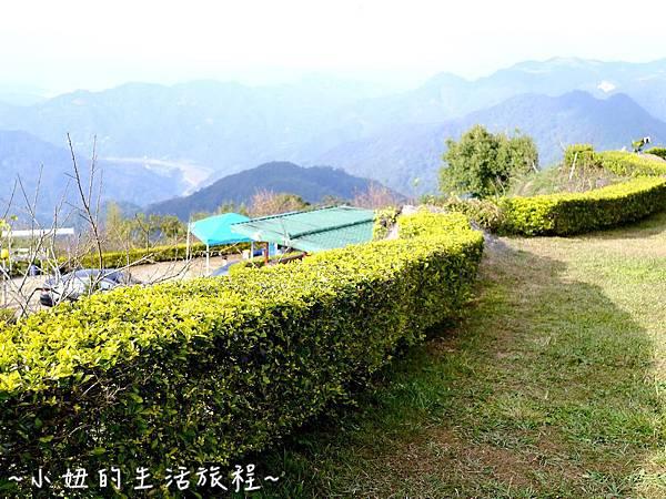 小妞的生活旅程27新竹五峰 賽夏有機農場 露營區 五星級.jpg