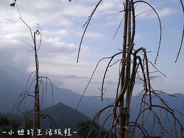 小妞的生活旅程35新竹五峰 賽夏有機農場 露營區 五星級.jpg