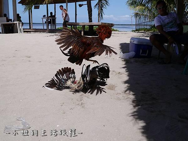 07菲律賓 宿霧 資生堂島 渡假 海島 美景 浮潛.JPG