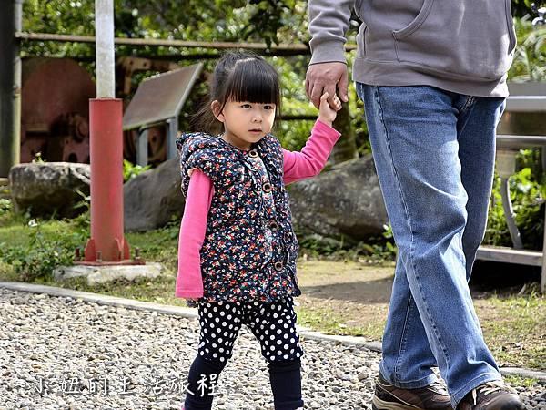 06親子DIY 新竹 那羅部落 景點 旅遊 香草  金盞花.jpg