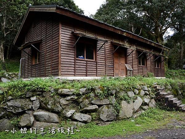 21親子DIY 新竹 那羅部落 景點 旅遊 香草  金盞花.jpg