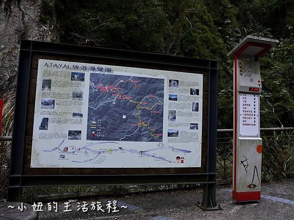 24親子DIY 新竹 那羅部落 景點 旅遊 香草  金盞花.jpg
