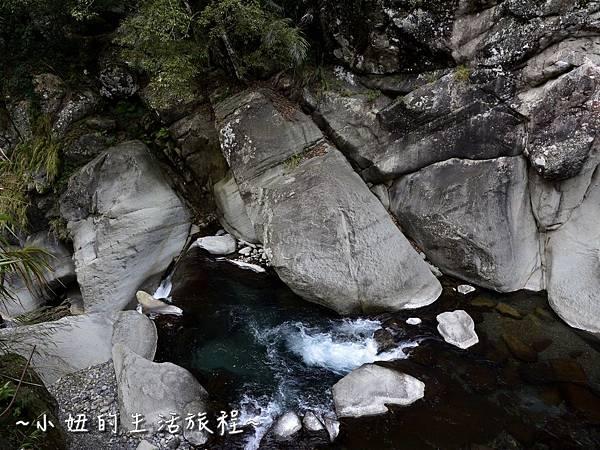 25親子DIY 新竹 那羅部落 景點 旅遊 香草  金盞花.jpg