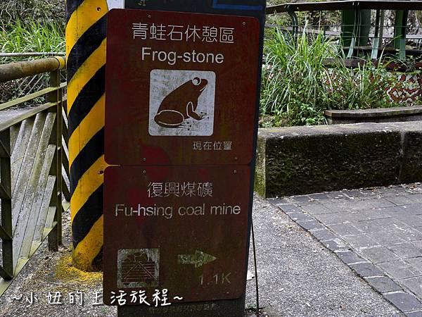 27親子DIY 新竹 那羅部落 景點 旅遊 香草  金盞花.jpg