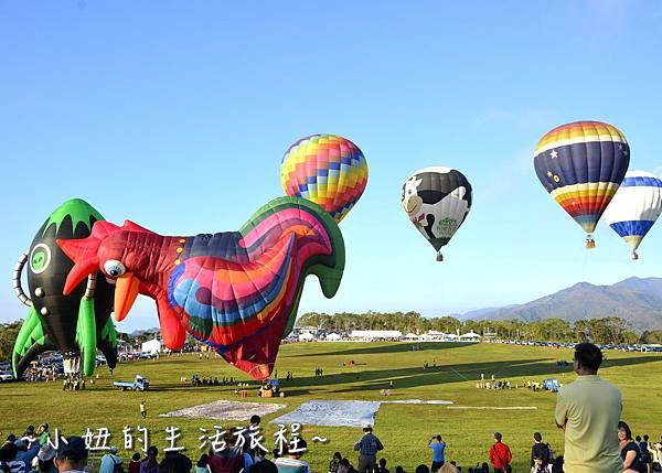 10台東 熱氣球 嘉年華 鹿野高台 票價 時間 期間.JPG