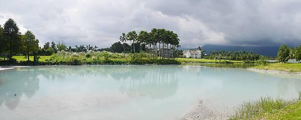29 花蓮 雲山水 落羽松 東華大學旁 落羽松林 花蓮景點.JPG