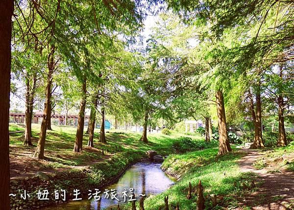 101 宜蘭落羽松 羅東運動公園落羽松 2016 2017 2018 2019 2020 2021 2022.jpg