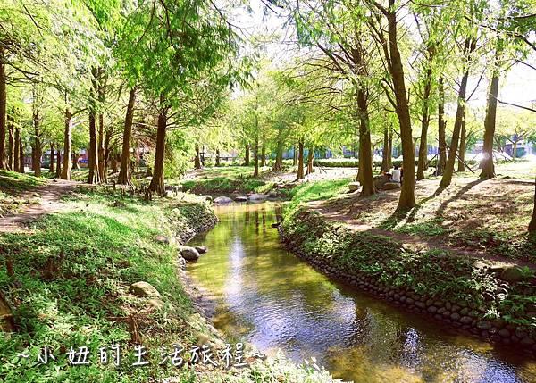 112 宜蘭落羽松 羅東運動公園落羽松 2016 2017 2018 2019 2020 2021 2022.jpg