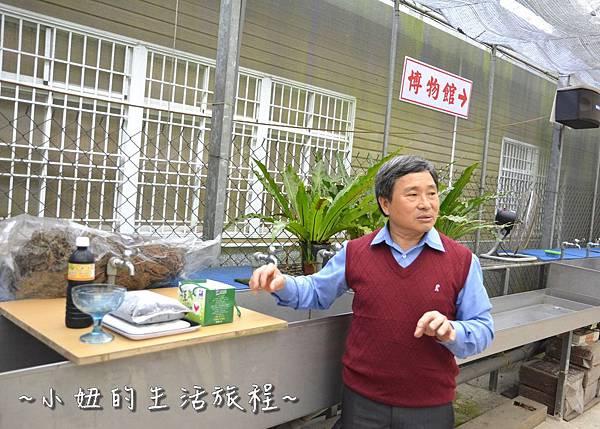 123 新竹關西親子景點  關西仙草博物館 仙草DIY   親子休閒農場.JPG