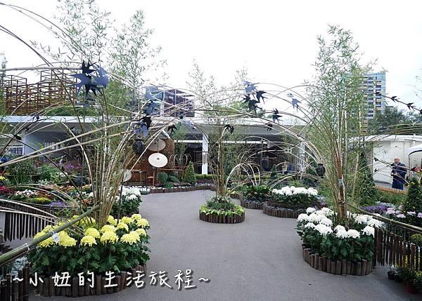 12  2016士林官邸菊展  菊花展.JPG
