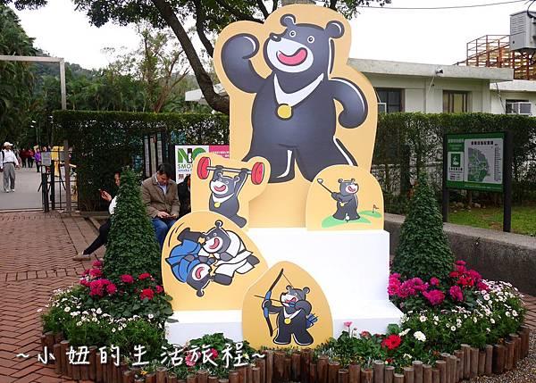 25  2016士林官邸菊展  菊花展.JPG