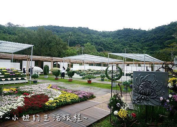 34  2016士林官邸菊展  菊花展.JPG