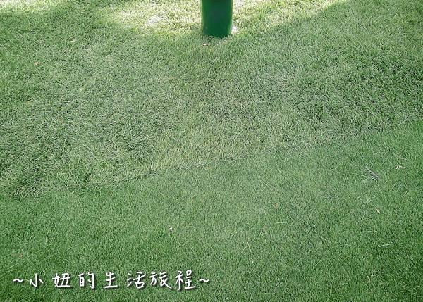 32 改建後榮星花園 台北榮星花園.jpg