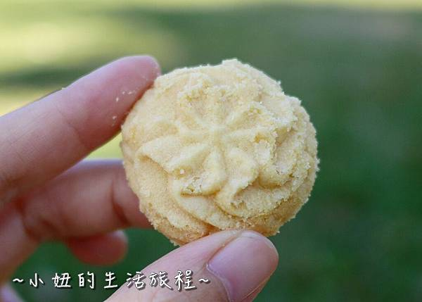 15 台灣黑熊曲奇餅乾 鴻鼎菓子 年節禮盒.JPG