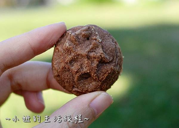 17 台灣黑熊曲奇餅乾 鴻鼎菓子 年節禮盒.JPG