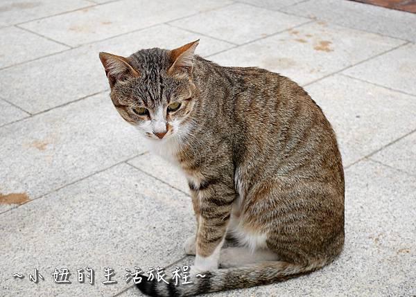18金門碧山彩繪村 金門彩繪村.jpg