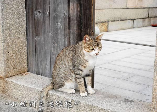 20金門碧山彩繪村 金門彩繪村.jpg