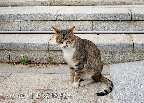 23金門碧山彩繪村 金門彩繪村.jpg
