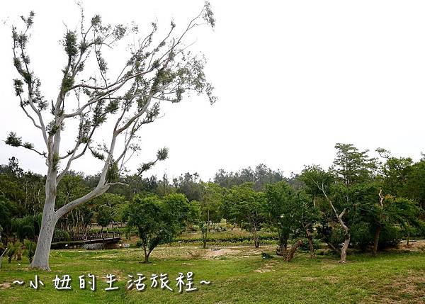 21金門植物園 金門親子景點  金門景點.jpg