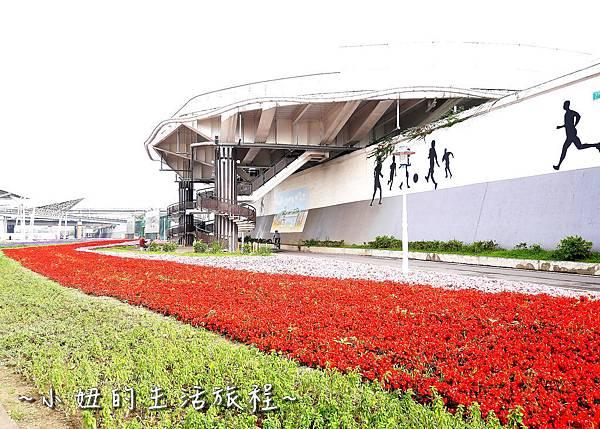 15台北延平河濱公園 賞花 花海 自行車 大稻埕碼頭 迪化休閒運動公園.jpg