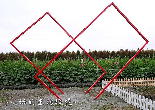 37  2017田中蜀葵花海節 彰化 田中窯.JPG