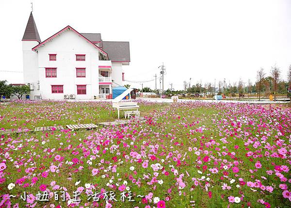 雲林 珍粉紅城堡P1150371.jpg