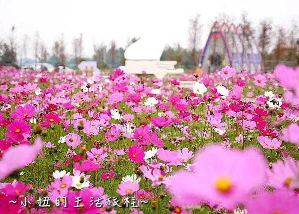 雲林 珍粉紅城堡P1150381.jpg