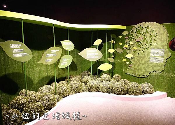 國立科學工藝博物館 亞洲最高 立體螺旋溜滑梯P1230546.jpg