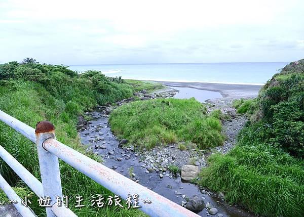台東景點 台東自行車 P1270148.jpg