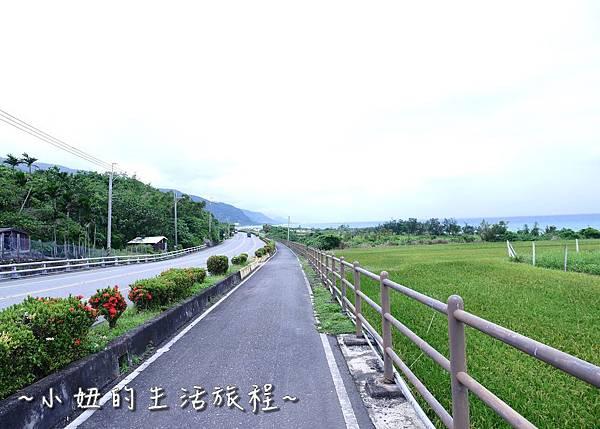 台東景點 台東自行車 P1270171.jpg