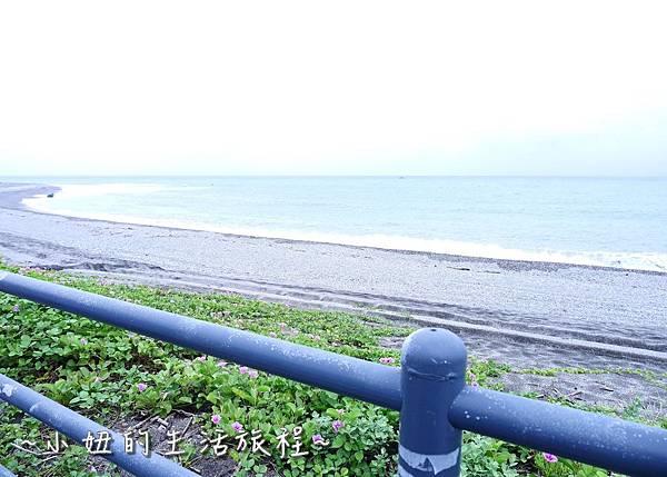 台東景點 台東自行車 P1270179.jpg