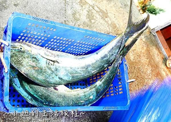 台東景點 台東七星潭 洄遊潮  P1270366.jpg