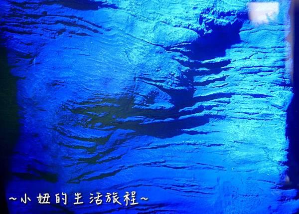 台中潛水旅館 潛立方P1280579