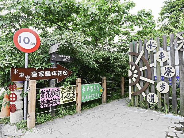 陽明山 高家繡球花田-1.jpg