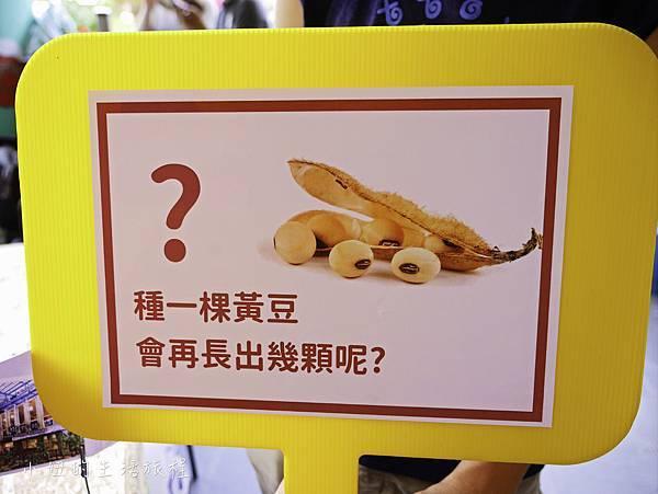 草悟廣場 綠食好時節 -6.jpg