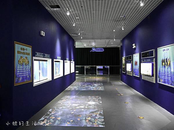 台東夢想館-17.jpg