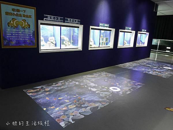 台東夢想館-20.jpg