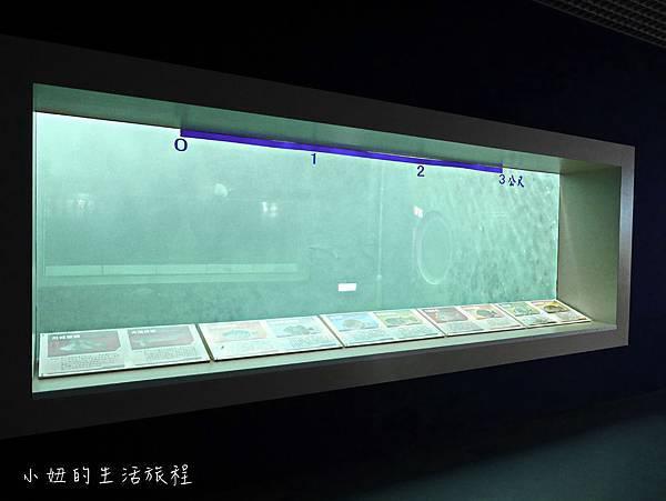 台東夢想館-25.jpg