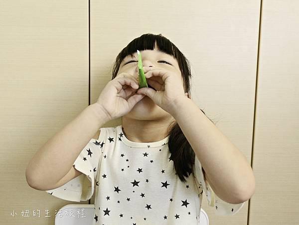 益生菌推薦-16