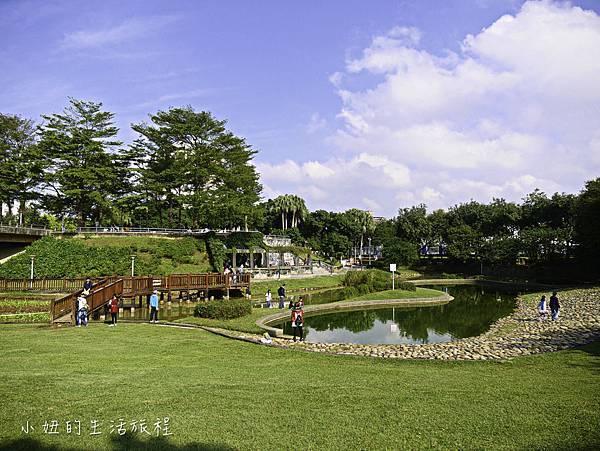 陽明運動公園,桃園,陽明公園-8.jpg