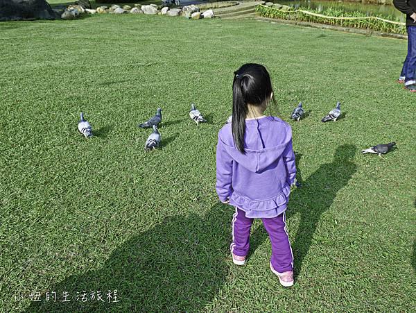 陽明運動公園,桃園,陽明公園-21.jpg